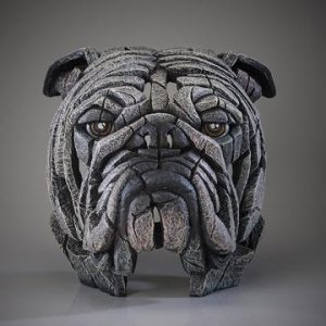 Bulldog Bust White
